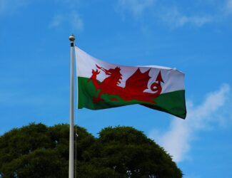 Welsh flag - Brownie Delivery Wales