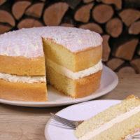 Lemon Cake Sponge