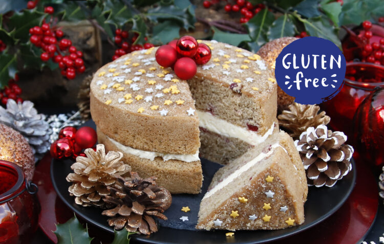 Gluten Free Cranberry and Orange Cake